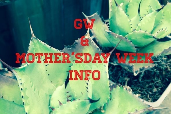 GW&mother'sday week info